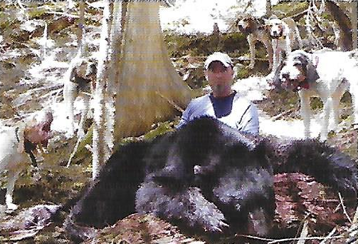Dean Numandeau with a 300 lb plus nice trophy bear. Dean says he was a hard long running bear that finally treed late in the afternoon.